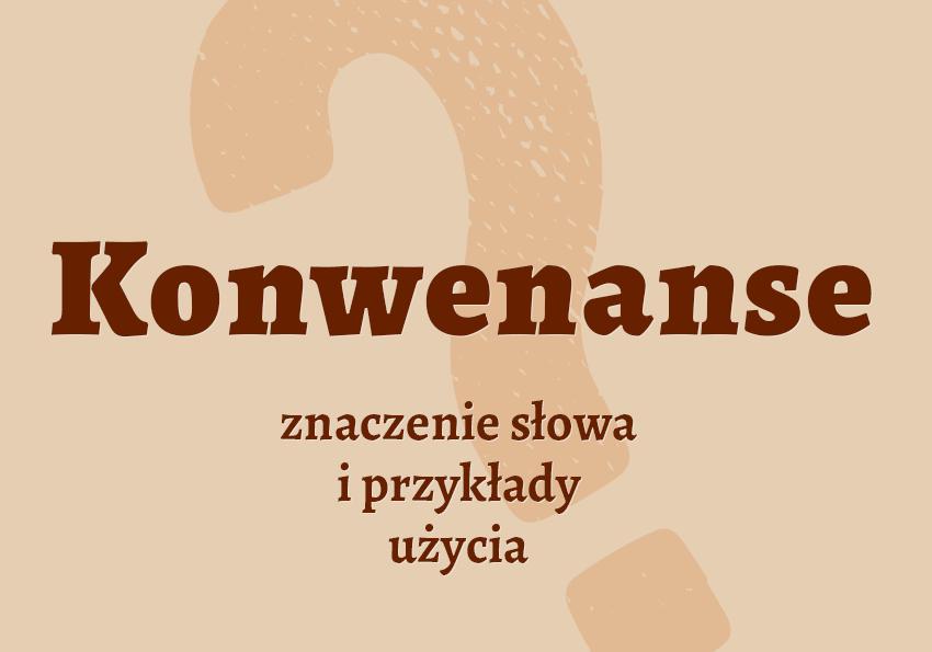 Konwenanse - co to jest? Czym są? Definicja, znaczenie, przykłady. Synonimy. Słownik Polszczyzna.pl