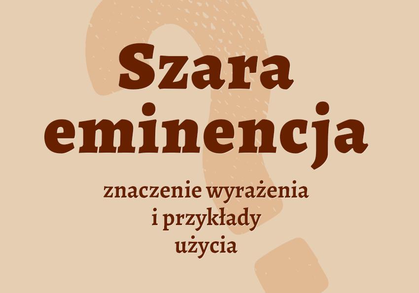 Szara eminencja - kto to jest? Co to jest? Znaczenie, definicja. Słownik Polszczyzna.pl