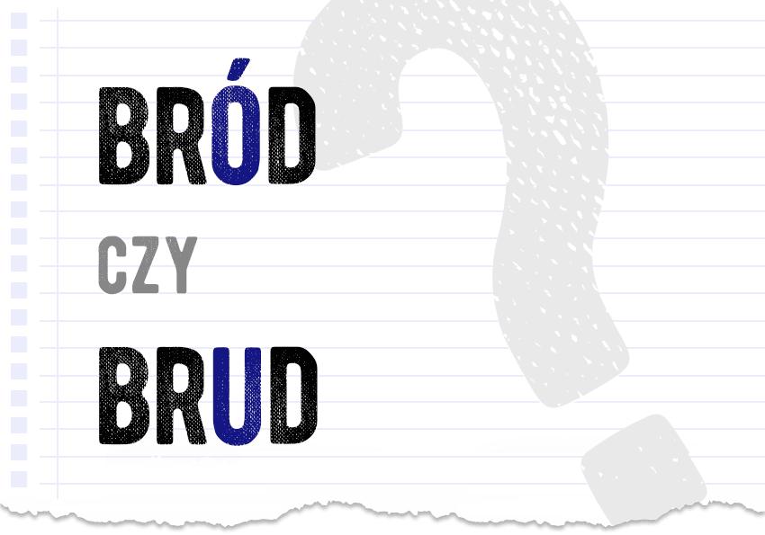 Bród czy brud? Poprawna forma. Wyjaśnienie, słownik, poradnia Polszczyzna.pl