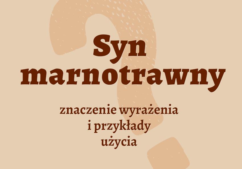 Syn marnotrawny - kim jest? Przypowieść, znaczenie pochodzenie, przyklady. Biblizmy. Słownik Polszczyzna.pl